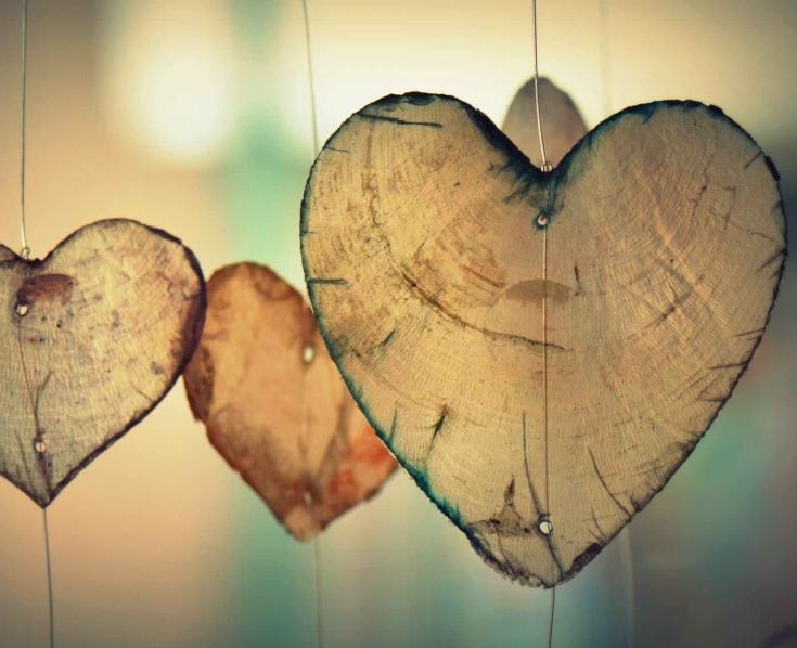 broke broken hearts delicate frail sad lonely #eroseco