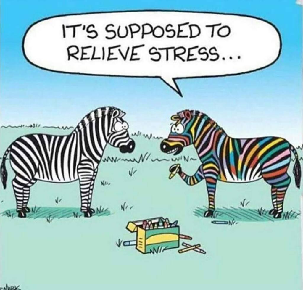 eds ehlers-danlos ehlers danlos syndrome hypermobile stress hypermobility chronic illness pain genetic zebra #eroseco