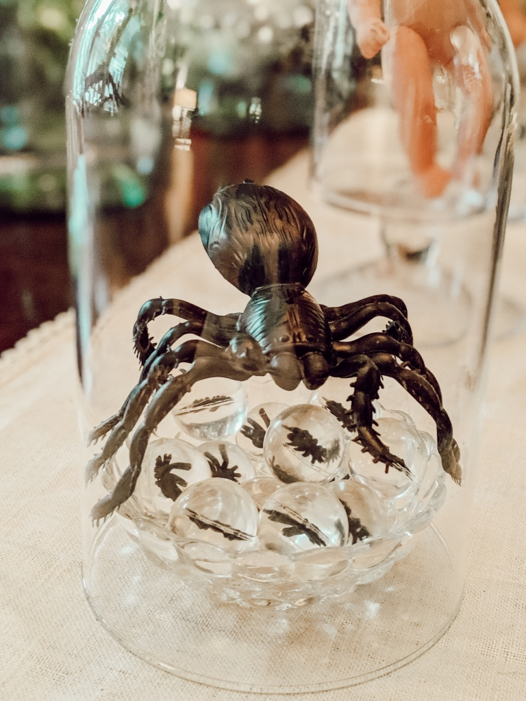 spider, spider eggs, glass, halloween, decorations, decorating